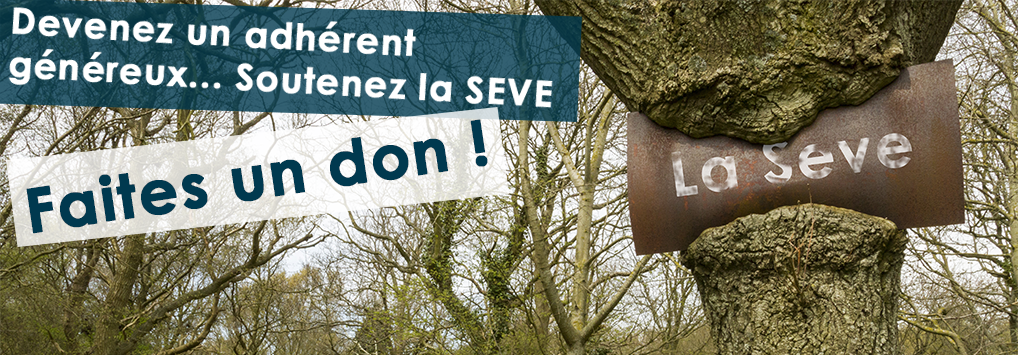 Faites un don - Association La SEVE