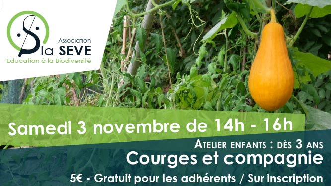 atelier-courges