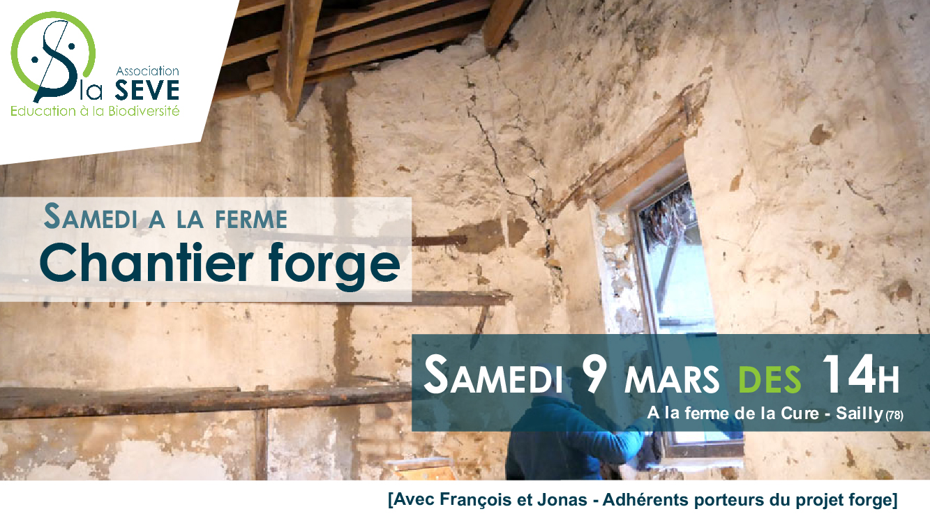chantier-forge